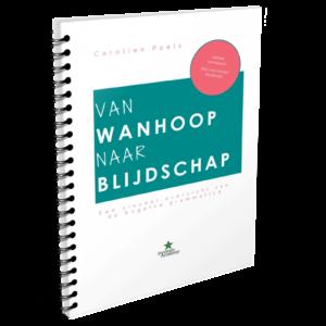 Boek – Van Wanhoop naar Blijdschap
